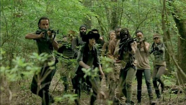 TWD group